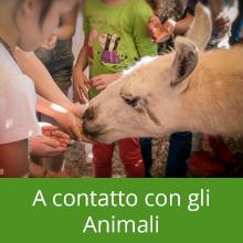 A contatto con gli Animali - Piccola Fattoria di Sermoneta